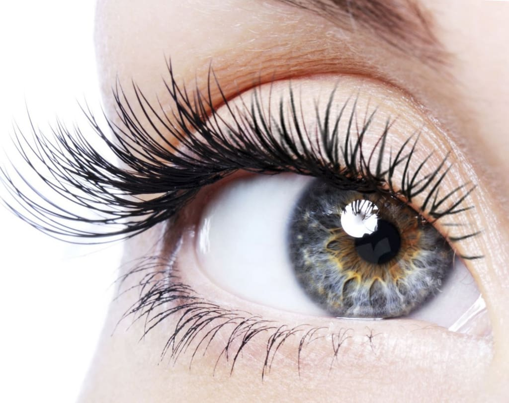 photo lash extensions prague